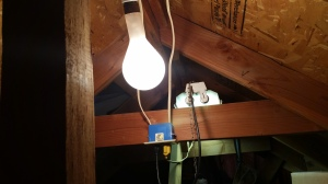 Blog - photo - 500 Watt bulb